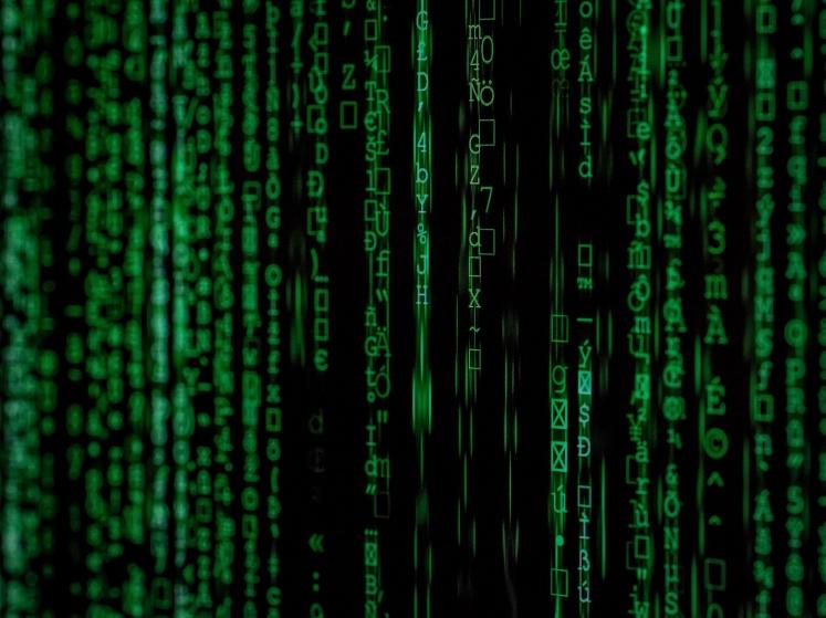 Panameños lideran competencia de ciberseguridad